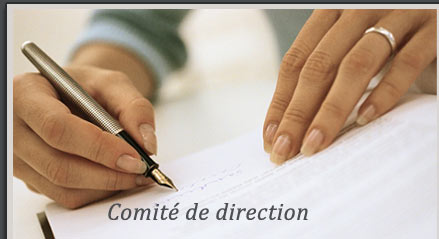 comit� de direction